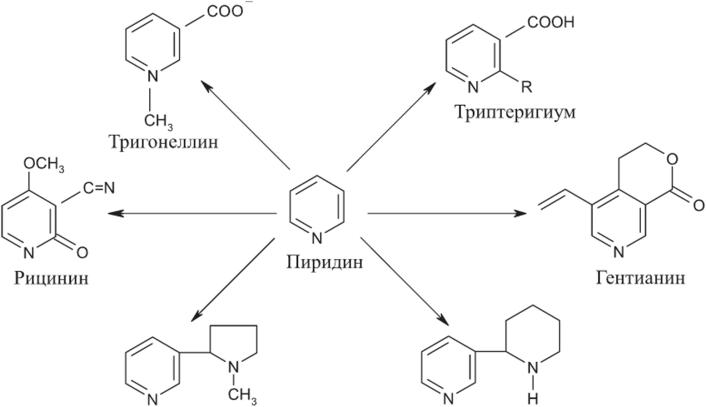 Химический состав табачных изделии iqos одноразовые электронные сигареты